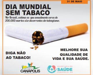 31 de maio: Dia Mundial Sem Tabaco.